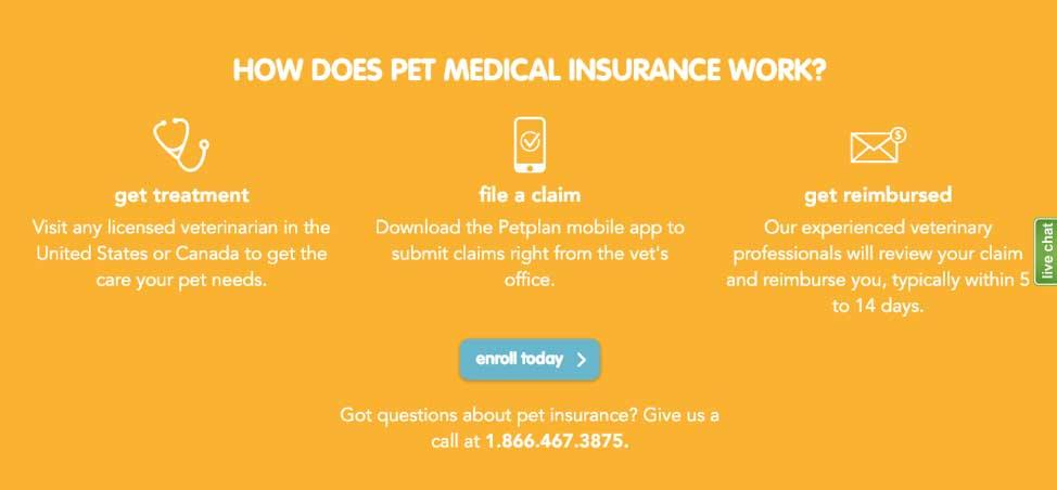 how does pet medical insurance work - petplan