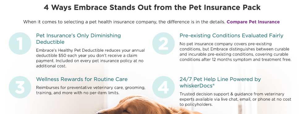 embrace pet insurance pack