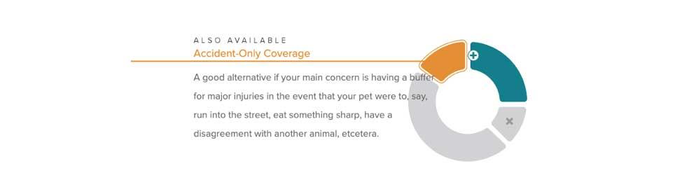 Hartville pet insurance accident coverage